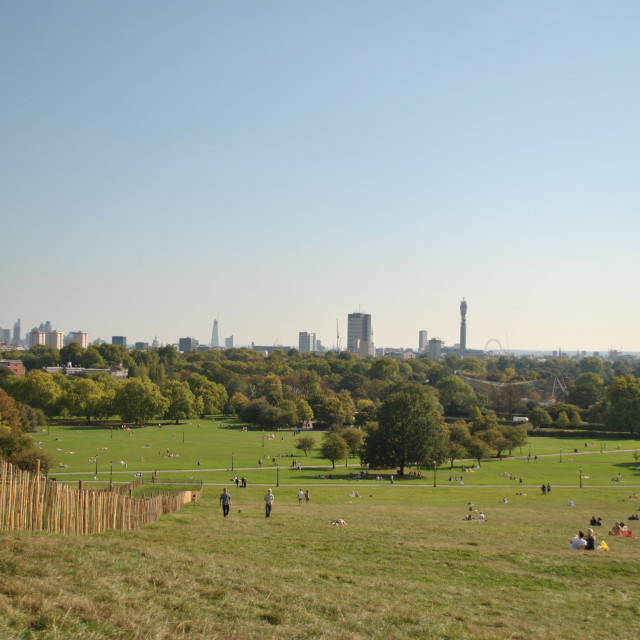 """View of London skyline from Primrose Hill on a sunny summer day, London, England, UK"" stock image"
