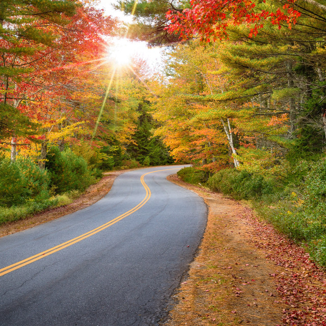 """Winding road curves through autumn trees in New England"" stock image"