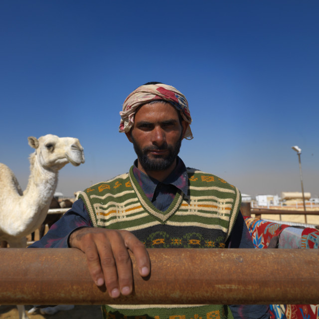"""Man in camel market in riyad, Saudi arabia"" stock image"