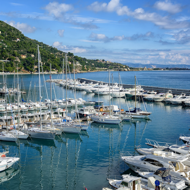 """""""White yachts docked in port of Alassio on Riviera, Italy"""" stock image"""