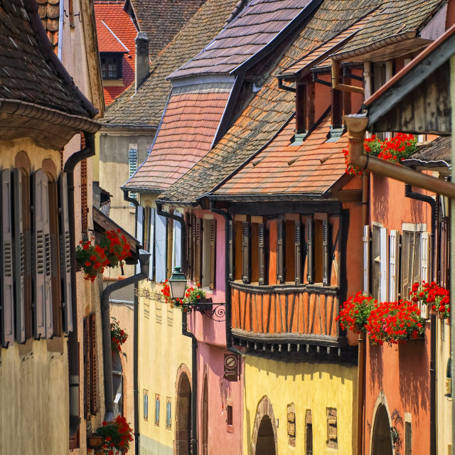 """""""Colorful houses in a street in alcacian village by Colmar, Alsace, France"""" stock image"""