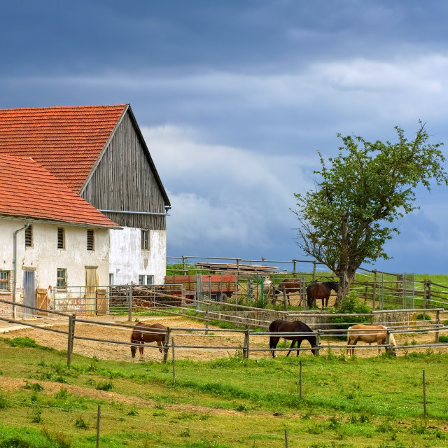 """""""Traditional red tiled roof farm house with horses in Bavaria, Germany"""" stock image"""
