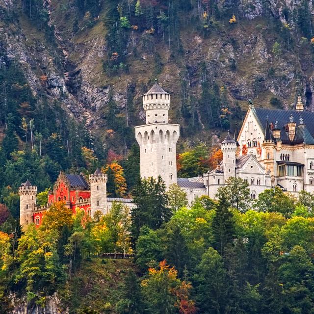 """Romantic Castle Neuschwanstein, Germany"" stock image"