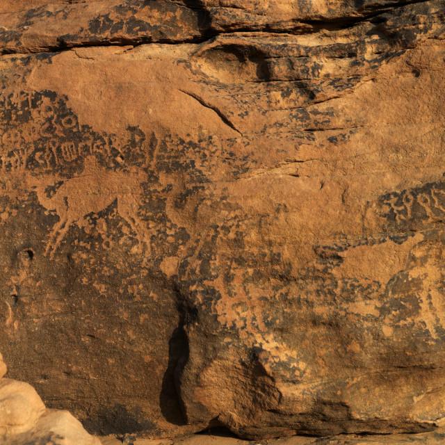 """Rock gravings around najran, Saudi arabia"" stock image"