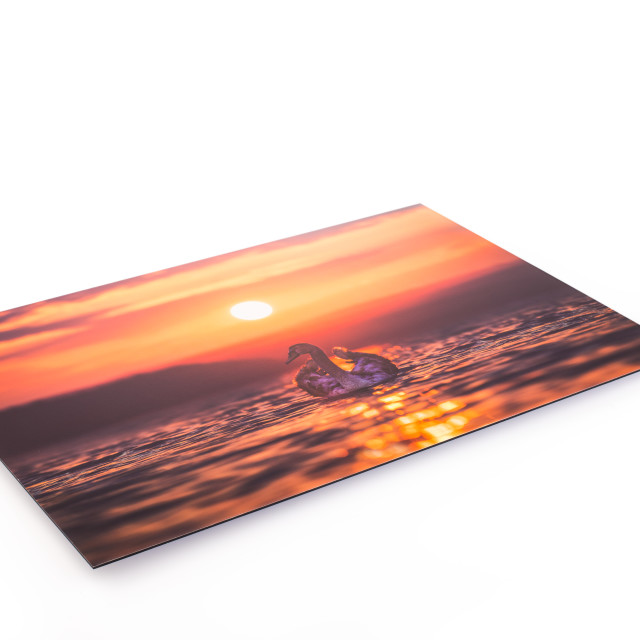 """""""Canvas print of landscape scenery hung up on wall"""" stock image"""