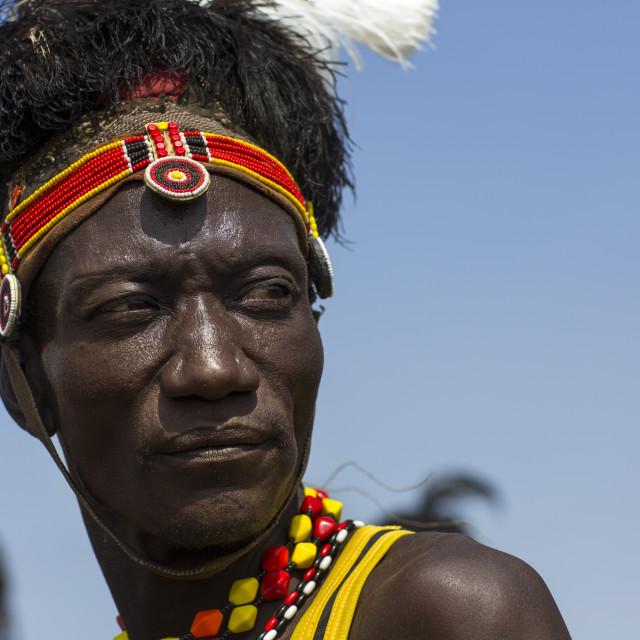 """Turkana Tribesman With Headwear Made Of Ostrich Black Feathers, Turkana Lake,..."" stock image"