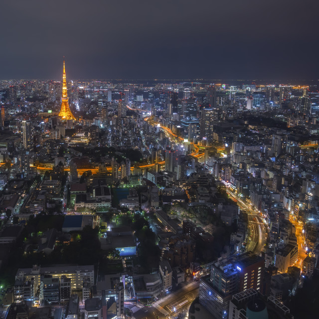 """""""Tokyo Tower and urban city skyline at cloudy night"""" stock image"""