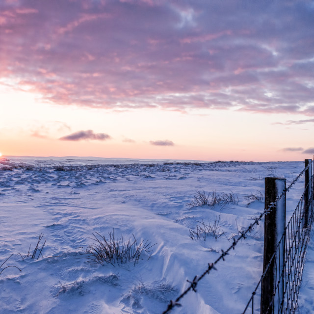 """Snowy sunset fence"" stock image"
