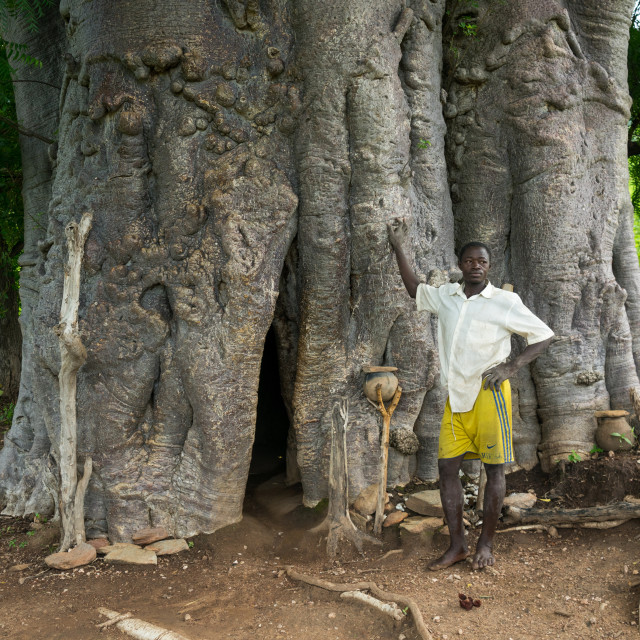 """Togo, West Africa, Nadoba, tamberma somba tribe man standing in front of an..."" stock image"