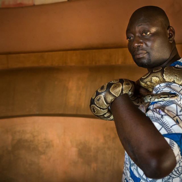 """Benin, West Africa, Ouidah, man holding a snake in the python temple"" stock image"