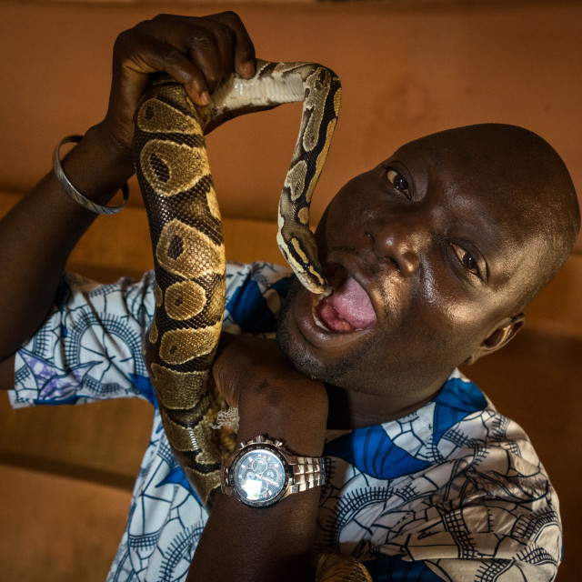 """Benin, West Africa, Ouidah, man putting a snake in his mouth inside the..."" stock image"