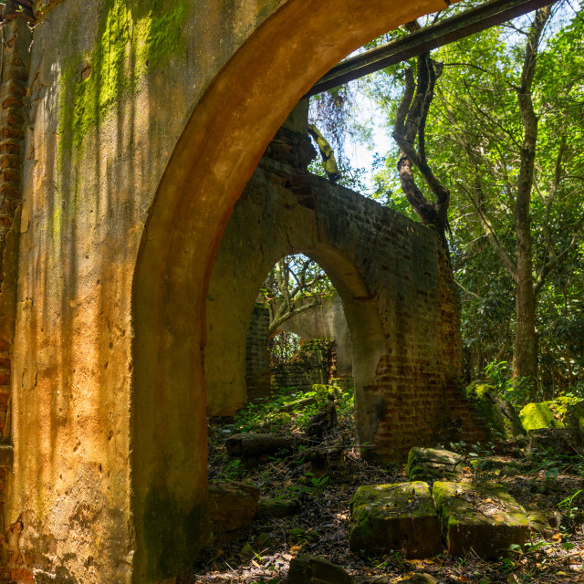 """""""Benin, West Africa, Ouidah, former palace in the sacred forest of kpasse"""" stock image"""