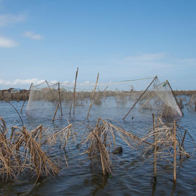 """Benin, West Africa, Ganvié, fishermen nets on lake nokoue"" stock image"