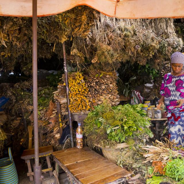 """Benin, West Africa, Cotonou, herbs used for traditional medicine in dantokpa..."" stock image"