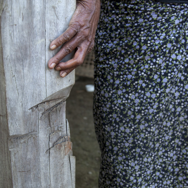 """""""Rohingya Woman Showing The Pillar Of Her House Cut By 969 Extremists..."""" stock image"""