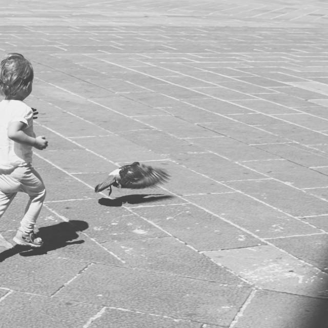 """Child Chasing Pigeon"" stock image"