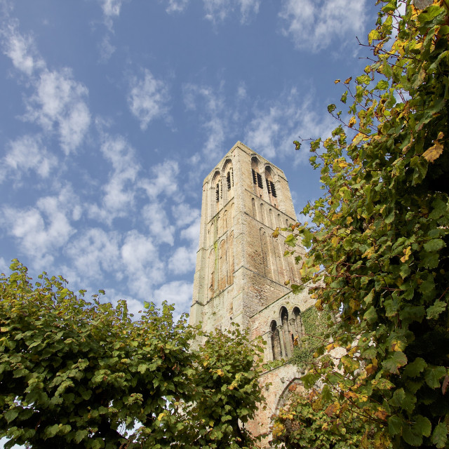 """""""A Church Tower"""" stock image"""