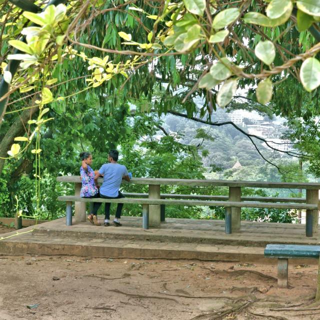 """""""Royal Palace Park, Kandy"""" stock image"""