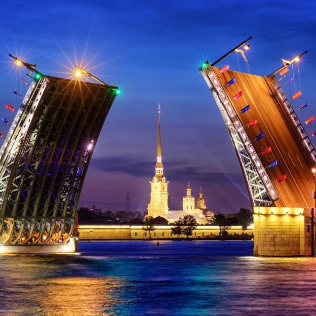 """The Palace Bridge on Neva river, St Petersburg, Russia"" stock image"