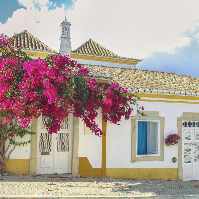 """Beautiful street in Tavira, Portugal"" stock image"