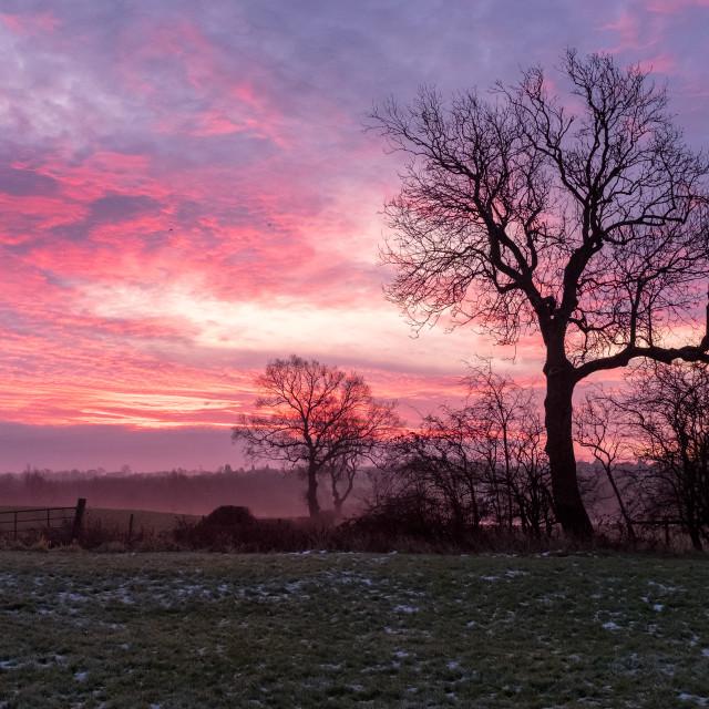 """Sunrise in Donisthorpe"" stock image"
