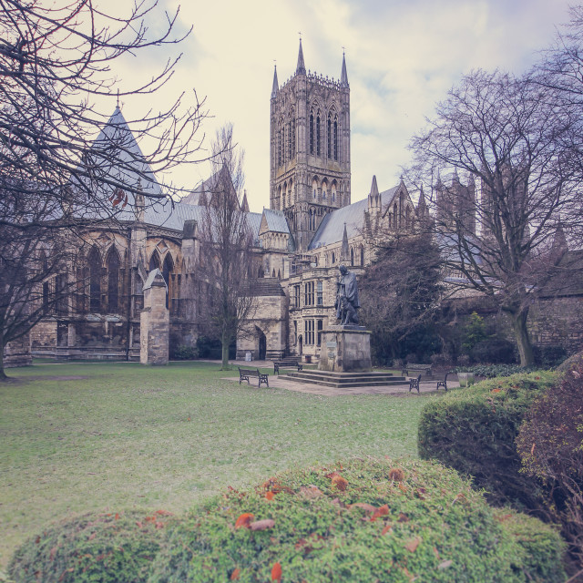"""Lincoln Cathedral Between the Trees"" stock image"