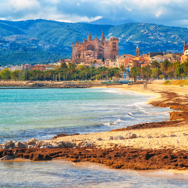 """""""Sand beach in Palma de Mallorca, gothic cathedral in background, Spain"""" stock image"""
