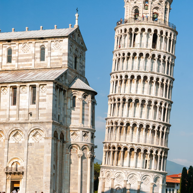 """""""The leaning tower of Pisa, Italy"""" stock image"""