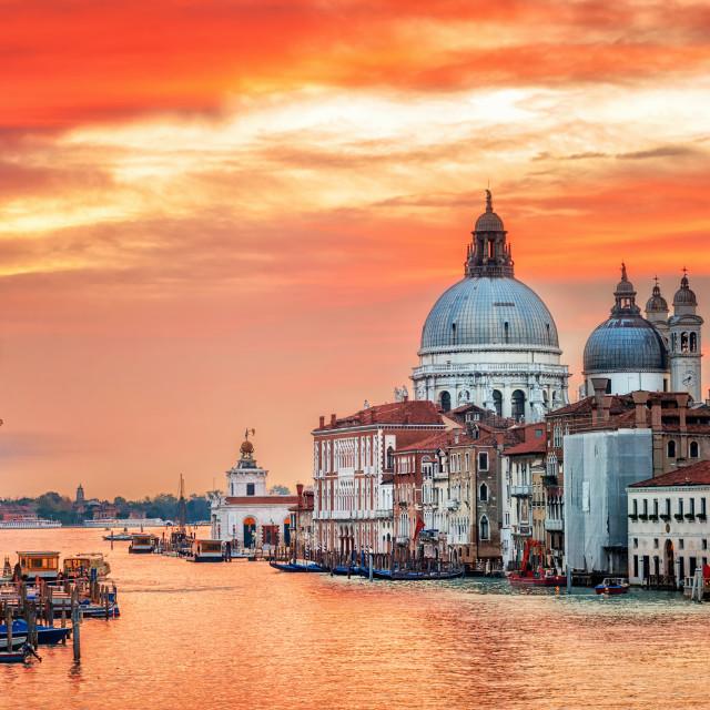 """""""Canal Grande and basilica Santa Maria della Salute on sunrise, Venice, Italy"""" stock image"""