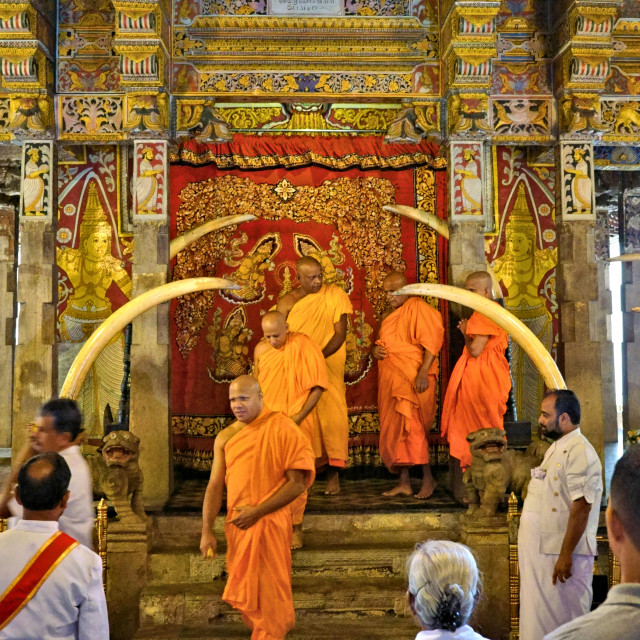 """""""Monks in the Temple of the Tooth"""" stock image"""
