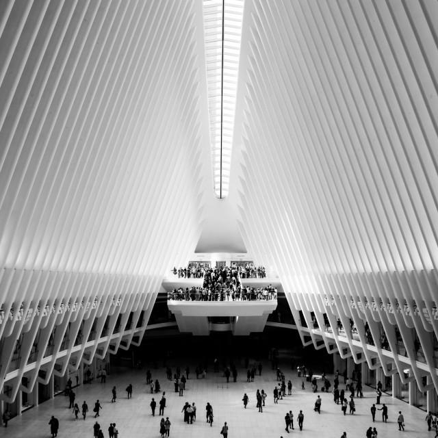 """New York XIV - One World Trade Center"" stock image"