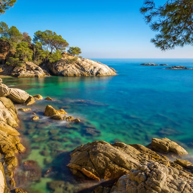 """Nice detail of the Spanish coast in Costa Brava, Playa de Aro"" stock image"