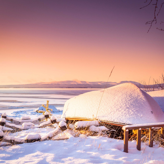"""Sunset during a Swedish winter"" stock image"