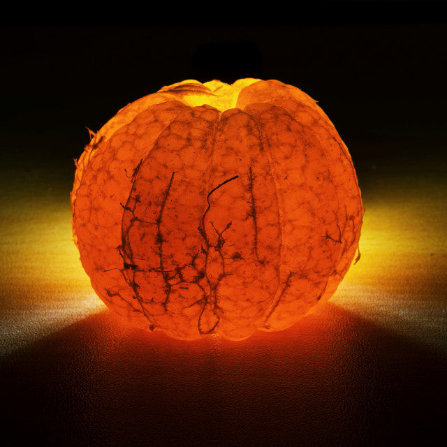 """Illuminated Orange fruit"" stock image"