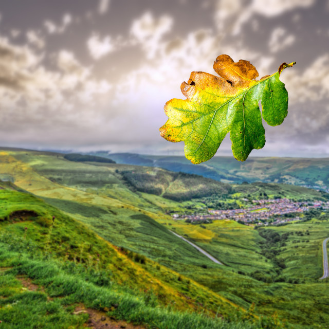 """Leaf blowing across a dramatic valley landscape in the U.K."" stock image"