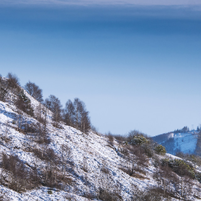 """Snowy hillside and trees beneath cold winter sky."" stock image"