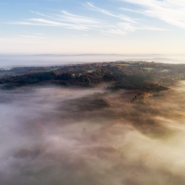 """South Downs Mist"" stock image"