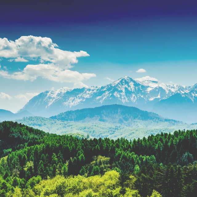 """""""Carpathian Mountains Landscape With Blue Sky In Summer"""" stock image"""