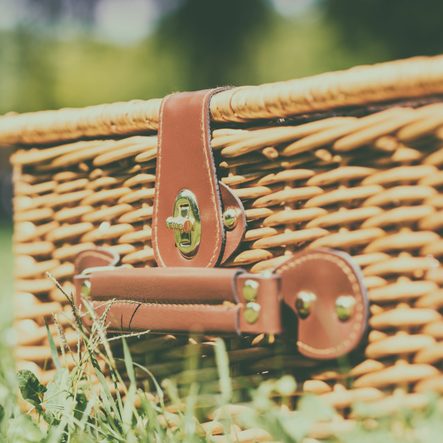 """Picnic Basket Hamper With Leather Handle In Green Grass"" stock image"