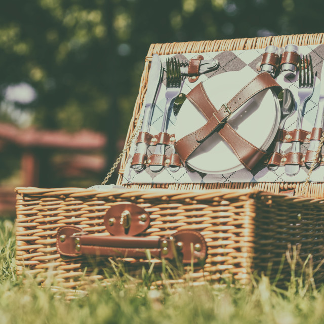 """""""Opened Picnic Basket With Cutlery In Spring Green Grass"""" stock image"""