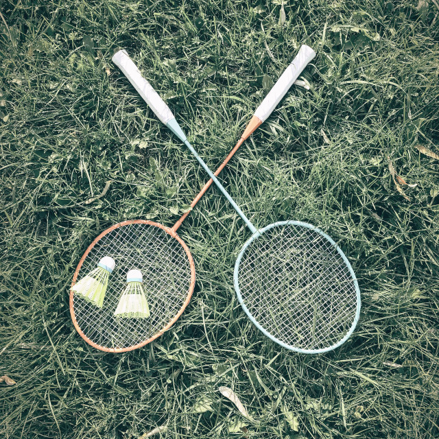 """Badminton Racket And Shuttlecock Equipment In Grass"" stock image"