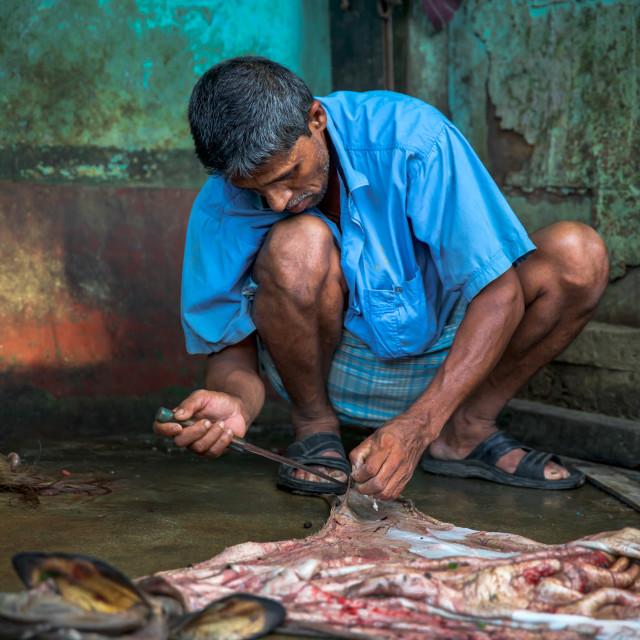 """Street life in Bangladesh XVI"" stock image"