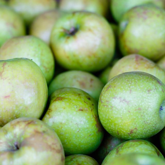 """Granny Smith Apples"" stock image"