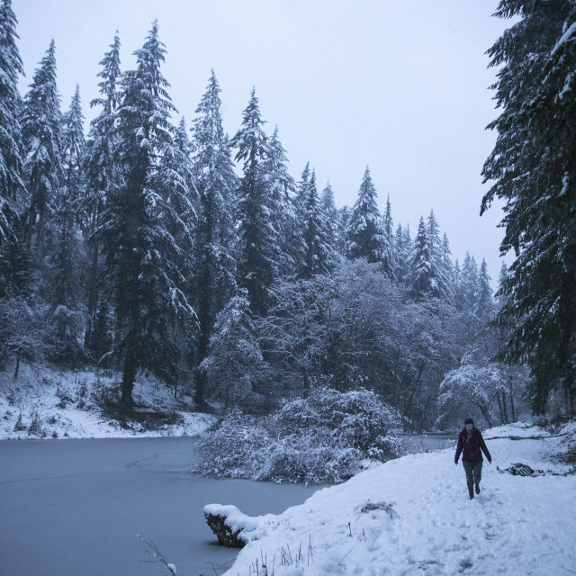 """Snowy Soudley Ponds"" stock image"
