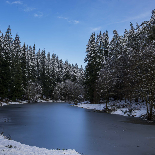 """Snowy Ponds"" stock image"