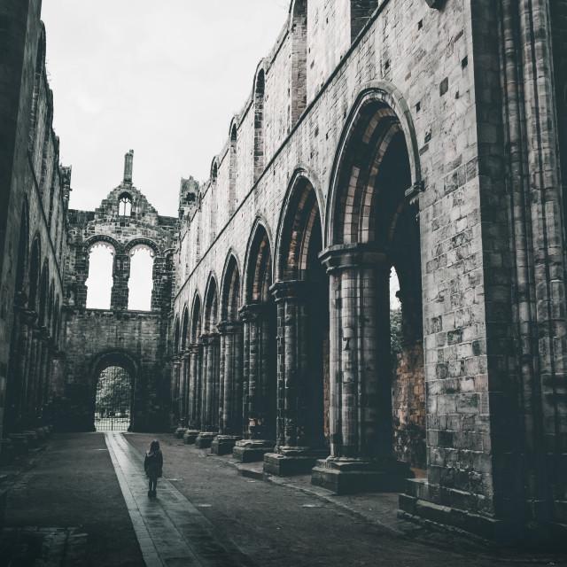 """""""Kirkstall Abbey, Leeds, West Yorkshire, England, UK"""" stock image"""