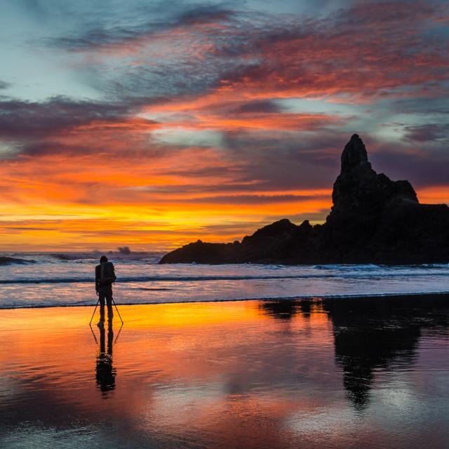 """Sunset Photographer"" stock image"