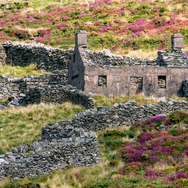 """Derelict Cottage in Snowdonia"" stock image"