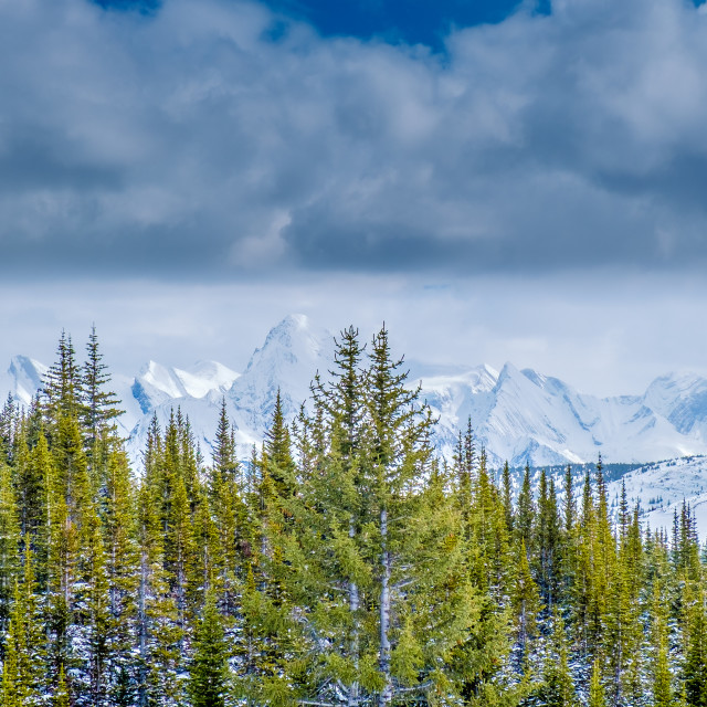 """Distant Mountains (Jasper, Canada)"" stock image"