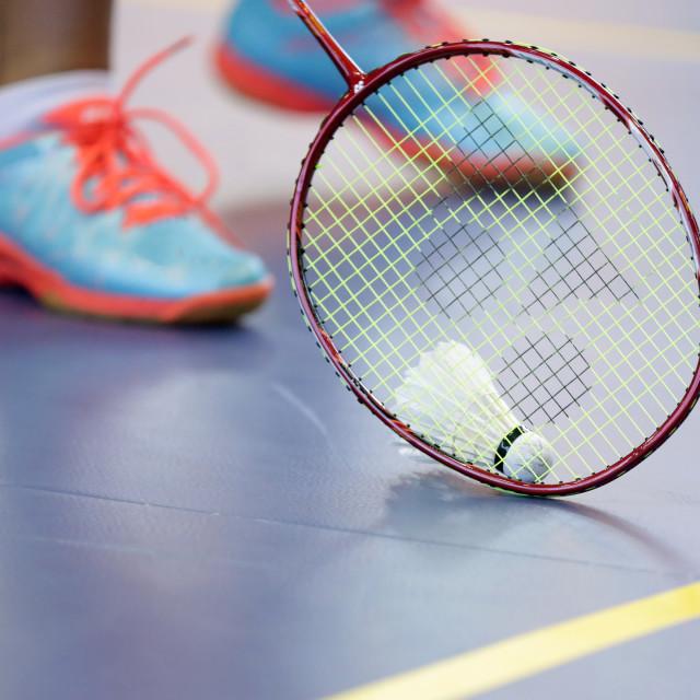 """""""Badminton racket with shuttlecock"""" stock image"""
